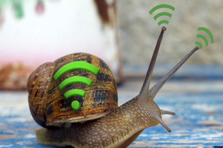 چرا هنوز اینترنت وایفای شما کند است؟